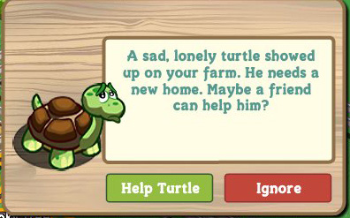 farmville turtle is lost and needs a new home.