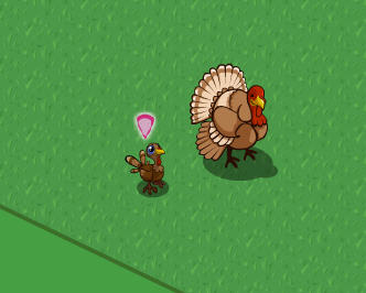 farmville turkey
