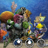 MyReef 3D Lets You Roll With Your Aquarium
