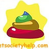 Pet Society Poo Guide: Plain, Golden, Rainbow -- How to Collect Them All