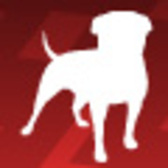 Zynga Passes 200 Million User Mark