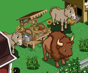 FarmVille Freak ArtisticPhotosMI's Buffalo