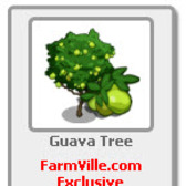 FarmVille Guava Tree now giftable from FarmVille.com