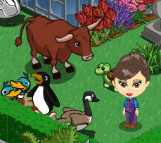 FarmVille Freak UglyPigeon's Ox