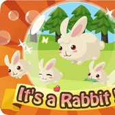 Follow the (free) White Rabbit to Country Story!