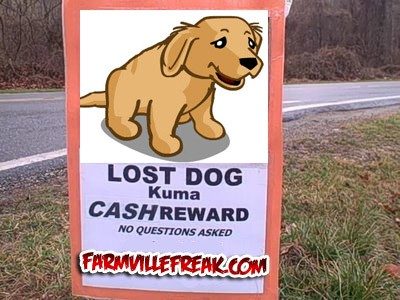 FarmVille Dog Missing