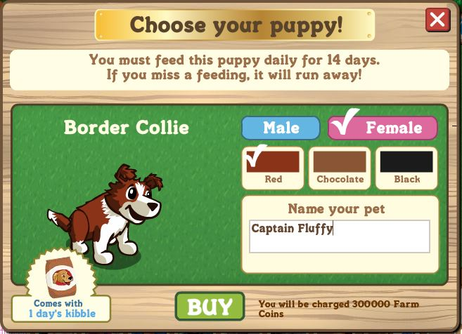 farmville border collie coins