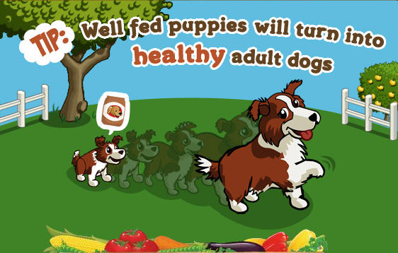 farmville puppies -- when will they grow up?
