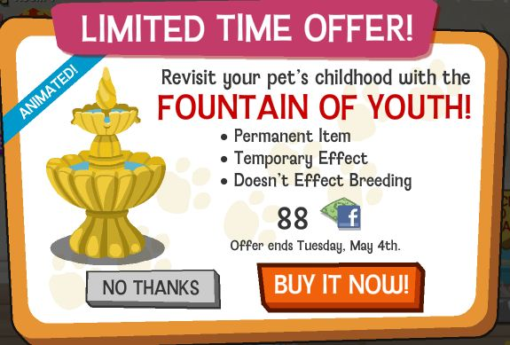 Happy Pets fountain of youth