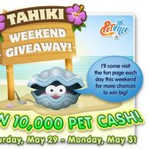 PetVille: Free Pet Cash Links Round-Up from the Tahiki Weekend Giveaway