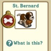 New FarmVille Puppy: St. Bernard