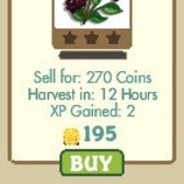 FarmVille Permanent Crop: Elderberry