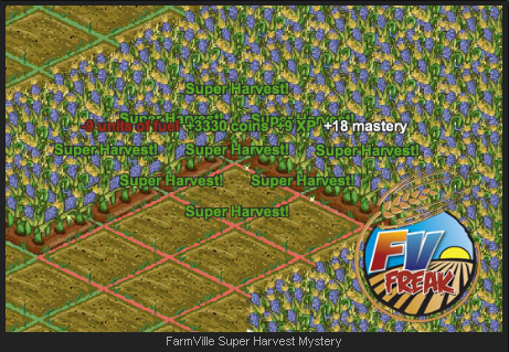 FarmVille Super Harvest Mystery