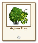 FarmVille.com Exclusive Gift Arjuna Tree