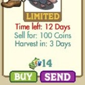 FarmVille LE Wild West Animal: Armadillo