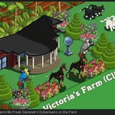 What should be the next FarmVille Dog?