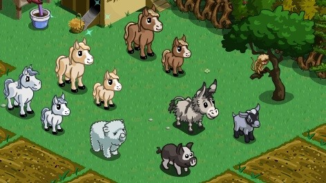 mini horses and mini foals -- see all fo t heme below
