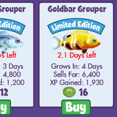 FishVille releases two limited time Grouper fish