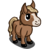 FarmVille Mini-Foal breeds: Mini Foal, Mini Stallion Foal, Mini Cream Foal