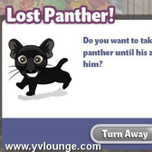 Yoville: Lost baby panther needs a home