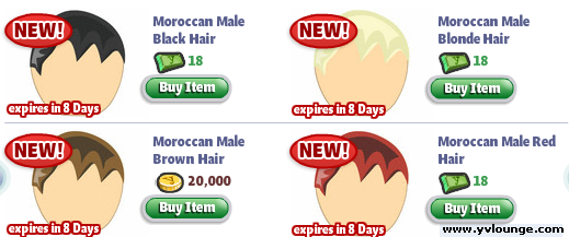 YoVille Male Moroccan Hair