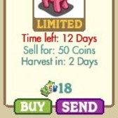 FarmVille: Hot Pink Pig returns to the Market for 12 days only