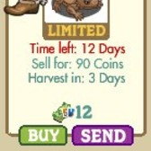 FarmVille Wild West Horned Toad