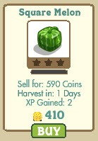 farmville square melon