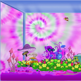 Happy Aquarium says it's time for the Age of Aquarius
