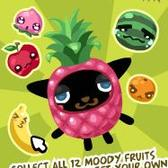 Pet Society: Hideeni returns with moody fruit plushies, find them all for a prize!