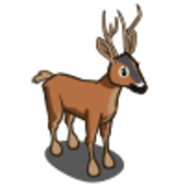 FarmVille Roe Deer leaps into the Market for eight days