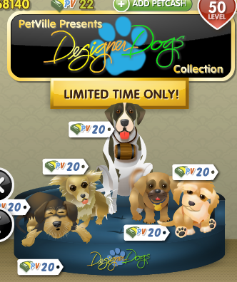 PetVille Designer Dogs Collection in store