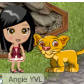 YoVille Smart Pets: Everything you need to know