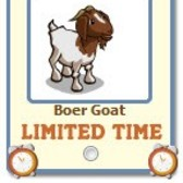 FarmVille Boer Goat now giftable for a Limited Time