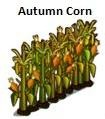 Autumn Corn