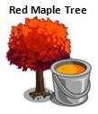 Red Maple Tree'