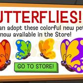 Happy Pets Butterflies flutter into your home for super cheap