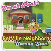 PetVille Neighborhoods: Zynga spi