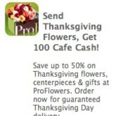 Send Thanksgiving Flowers, earn 100 free Cafe World Cafe Cash