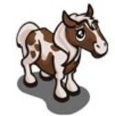 FarmVille Sneak Peek: Spotted Pony &amp; Spotted Pony Foal