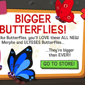 Happy Pets' Ulysses and Morpho Butterflies are hugely affordable