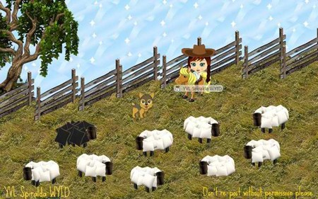YoVille sheep ranch