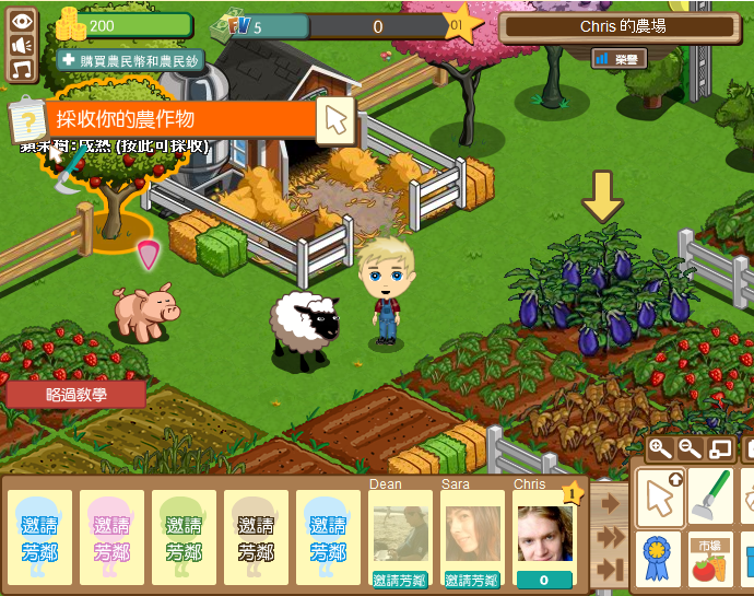 Chinese FarmVille
