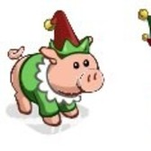 FarmVille Sneak Peek: Holiday Elf Pig, Elf Costume, and Ski Bunny Costume