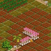 FarmVille loading problems: Farmers able to load find their crops withered