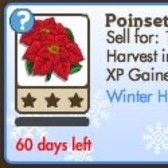 New FarmVille Crop: Winter Holiday Poinsettia