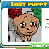 CityVille Lost Puppy Goal: A ploy to attract more players