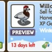 FarmVille Winter Wonderland Animals: Bear Cub & Willow Ptarmi