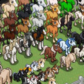 FarmVille Cheats and Tips: Horse and Foal Breeding Guide