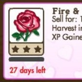 FarmVille Limited Time Crop: Fire & Ice Roses